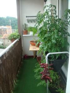 13-huerto en balcon